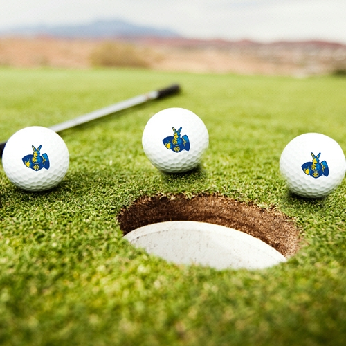 UMKC Roos Golf Balls Set of 3