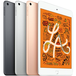 iPad Mini 2019 Wi-Fi 256 GB